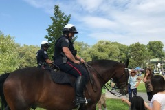 Police Horses at Tree Fest